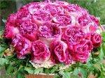 Салат с курицей и опятами «Розовый букет»