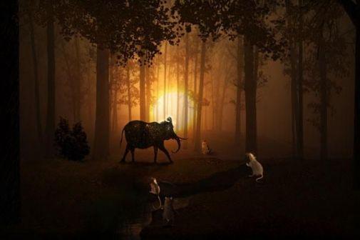 Сновидение –феномен человеческого существования