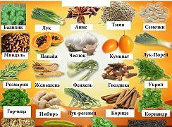 Согревающие и охлаждающие продукты