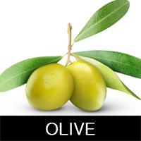 Масло Оливы
