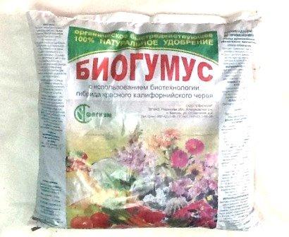 Выбор удобрений для комнатных растений
